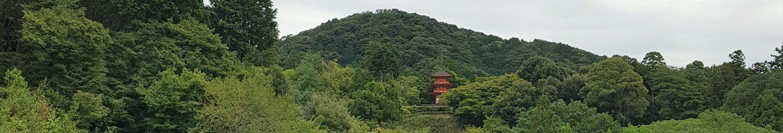 Ki Work Shiatsu